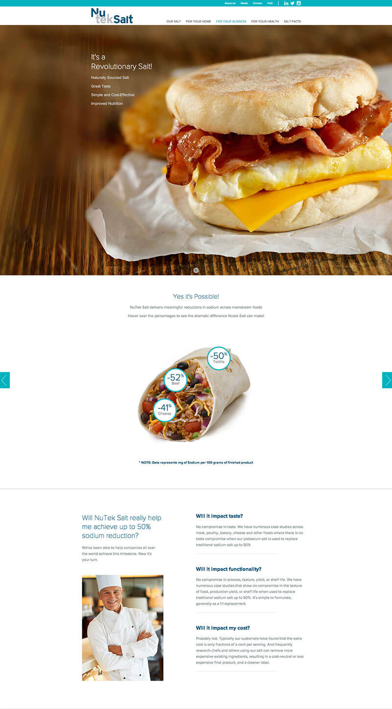 King Design Nutek Salt Landing Page Screenshot 2