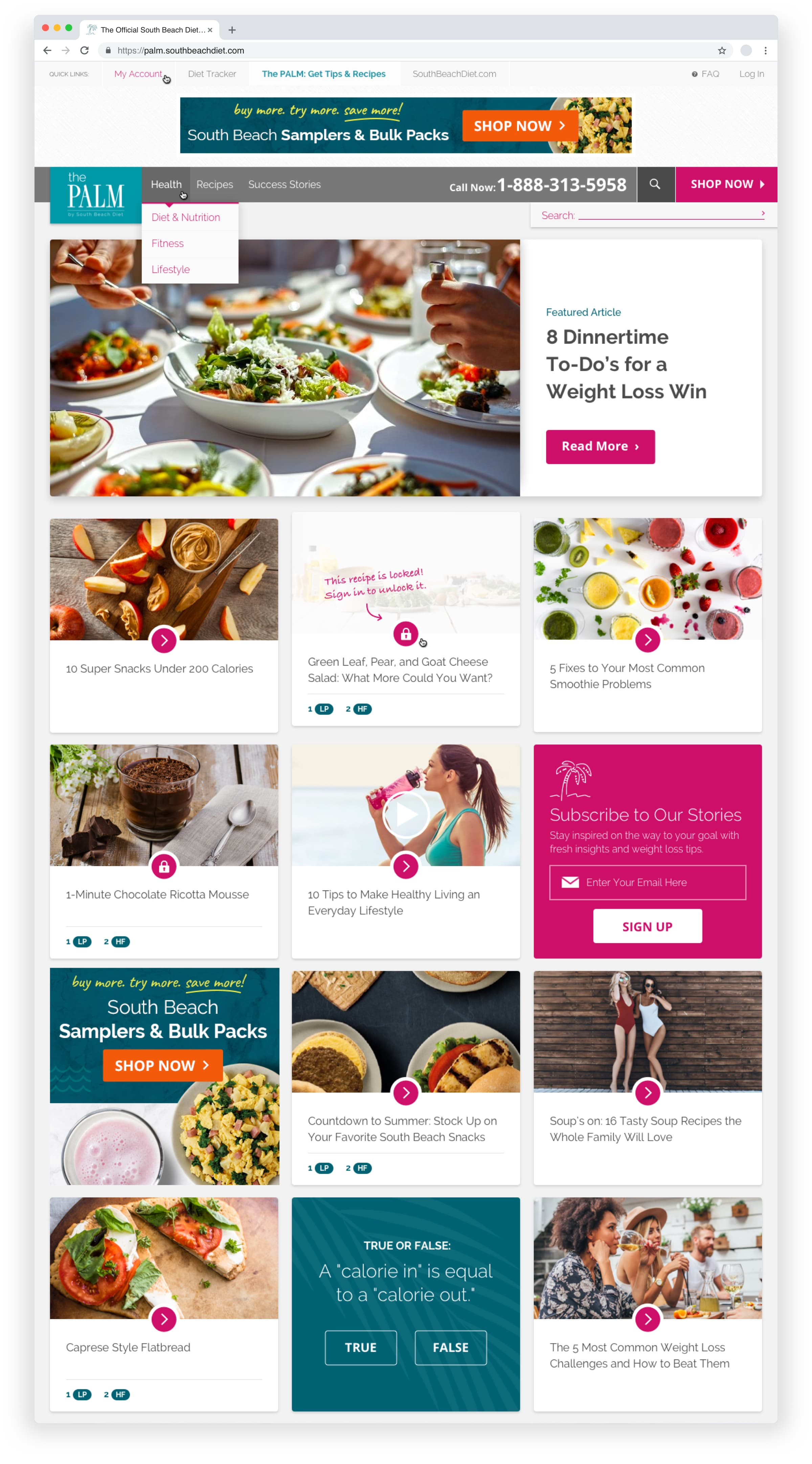 King Design South Beach Diet The Palm Homepage Design