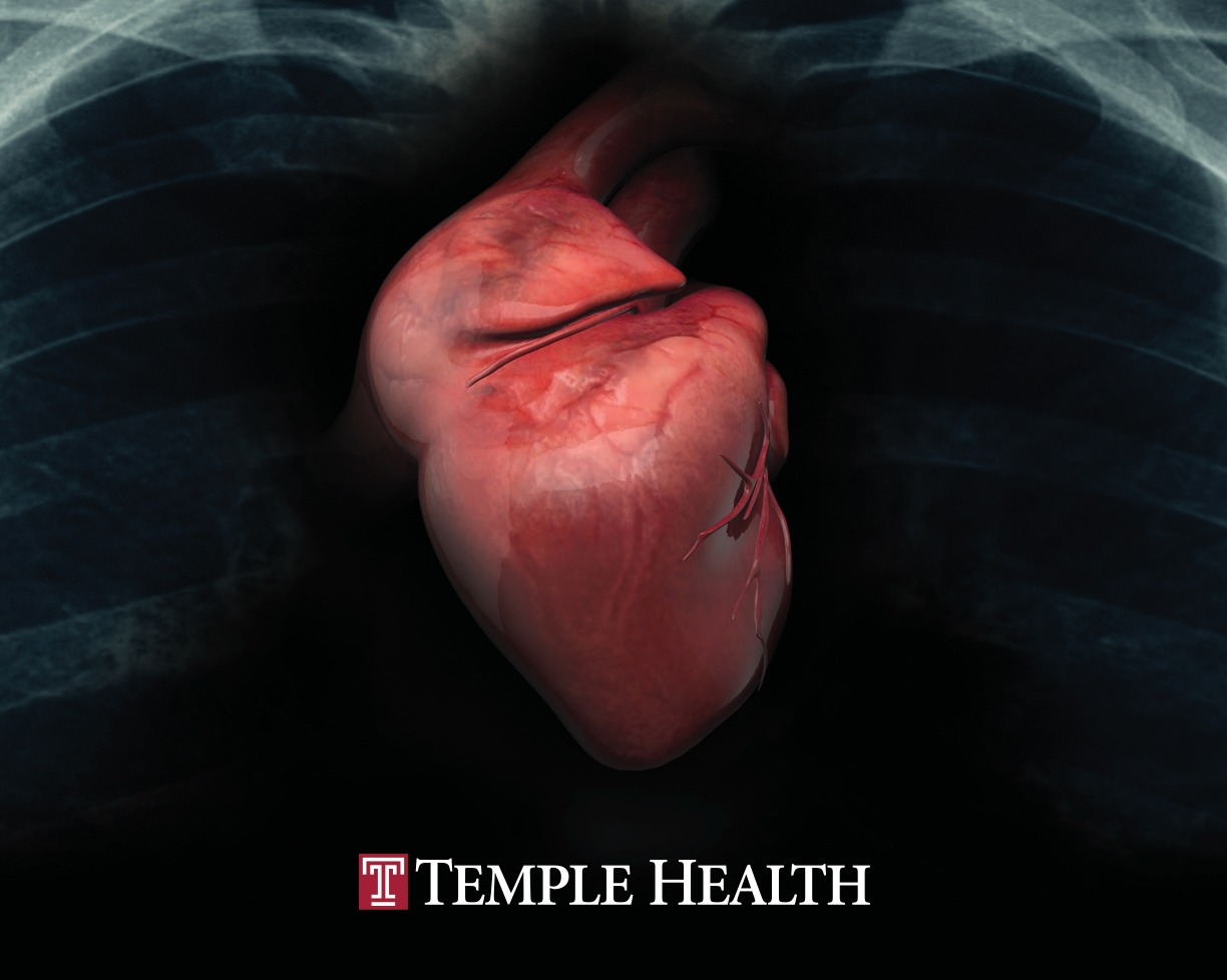 King Design Temple Health Porfolio Grid